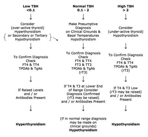 thyroid uk interpretation of thyroid blood tests