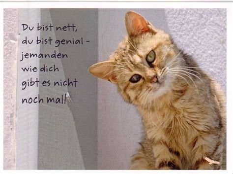 Du Bist Genial by Du Bist Nett Du Bist Genial Postkarte 1 10