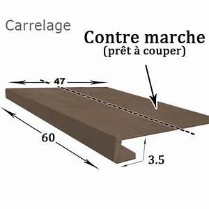 Nez De Marche Carrelage Exterieur : nez de marche en carrelage exterieur farqna ~ Dailycaller-alerts.com Idées de Décoration