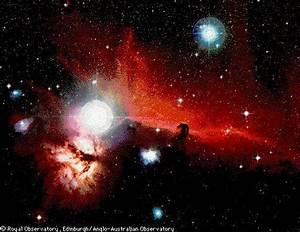 APOD: October 2, 1996 - Orion's Horsehead Nebula