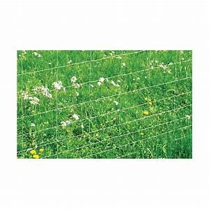 Grillage A Poule Bricomarche : grillage a mouton ~ Dailycaller-alerts.com Idées de Décoration