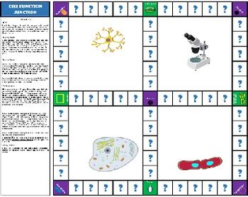 cell parts organelles board game  age  innovation
