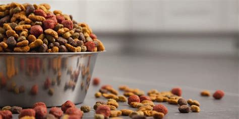 Ethical Cat And Dog Food