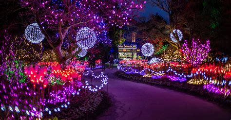 annual vandusen festival  lights begins run