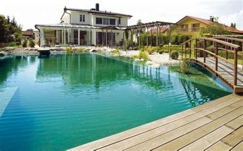 schwimmteich oder pool schwimmteich oder pool biopool und schwimmteich wasser im garten bauen und wohnen in der