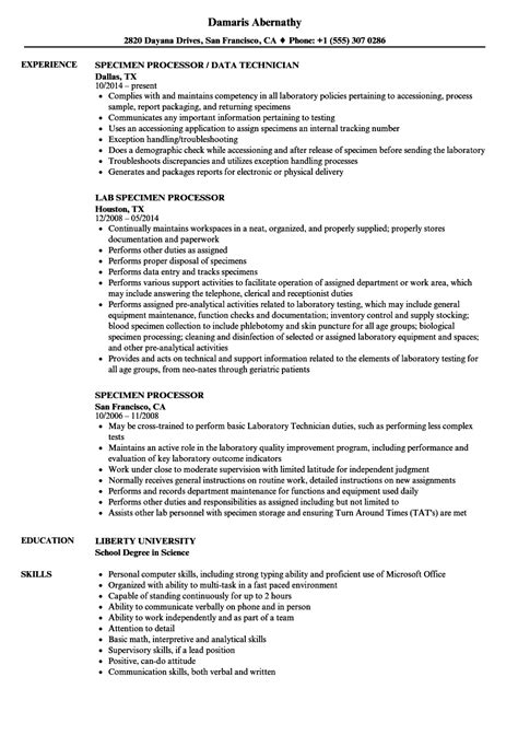 Specimen Of Resume by Specimen Processor Resume Sles Velvet