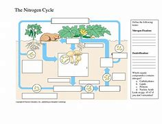 Images for nitrogen cycle simple diagram pattern66walllove hd wallpapers nitrogen cycle simple diagram ccuart Gallery