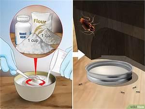 Tuer Les Cafards : 3 mani res de tuer des fourmis et des cafards sans insecticide ~ Melissatoandfro.com Idées de Décoration