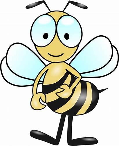 Bee Bumble Clip Clipart Bumblebee Biene Bees