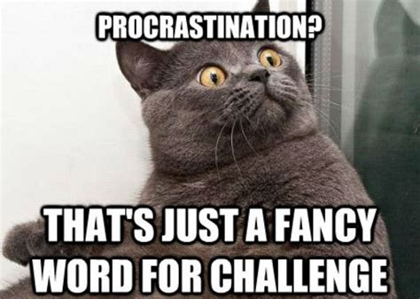 Procrastination Memes - 15 hilarious memes that will make procrastination lovers say quot same quot