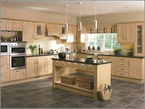 kitchen cabinet paint color ideas modern birch kitchen cabinets home design ideas