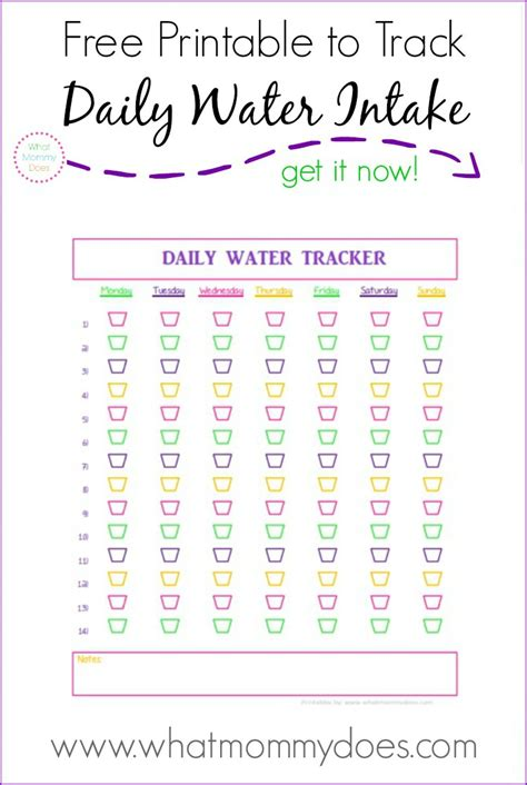 6 Healthy Lunch Ideas Under 500 Calories for Busy Moms (plus a printable water tracker!)   What
