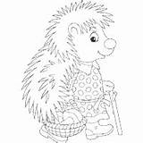 Porcupine Coloring Mushroomer Pages Surfnetkids sketch template