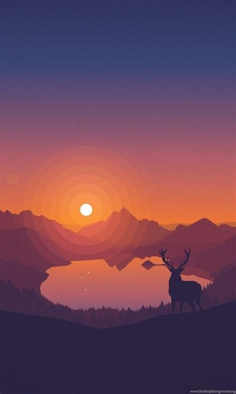 deer overlooking  lake  sunset wallpapers wppshack