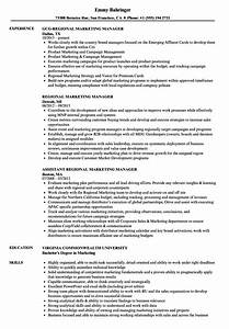 Regional Marketing Manager Resume Samples