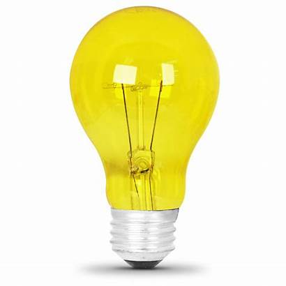 Yellow Bulb Watt Bulbs Party A19 Feit