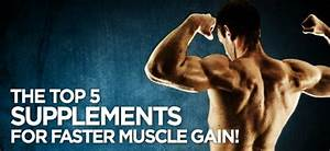 Best Muscle Gain Supplement - Help Your Workout