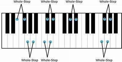 Half Piano Whole Step Notes Note Steps