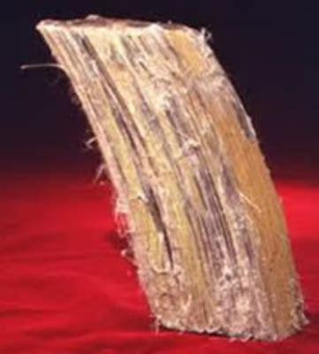 mesothelioma  asbestosis informasi kedokteran