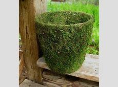 Kreative Ideen für Blumentöpfe in Ihrem Garten!