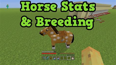 minecraft horse xbox fastest horses breed ps4 fast guide breeds much health