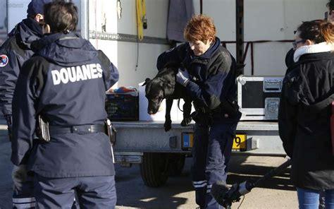 bureau des douanes la rochelle les douanes de la rochelle saisissent 630 kilos de