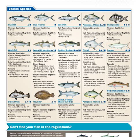 saltwater regulations fwc pdf author
