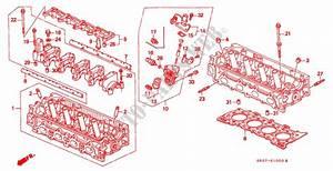 Wiring Diagram Honda Civic 1995 Portugues
