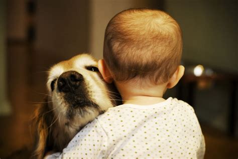Feel The Love: 30 Kids Giving Hugs to Their Dogs - Best