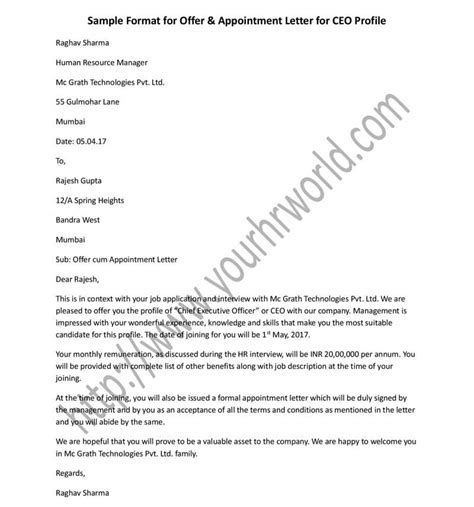 offer appointment letter format  ceo profile
