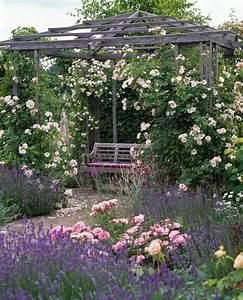 Pergola Pour Plante Grimpante : fleurs grimpantes pour pergola ~ Premium-room.com Idées de Décoration