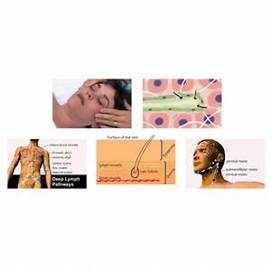 17 Best Images About Lympedema Lipedema Dercum U0026 39 S Disease