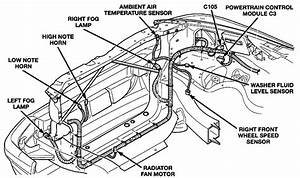 Dodge Dakota Wiring Diagrams And Connector Views  U2013 Brianesser Com