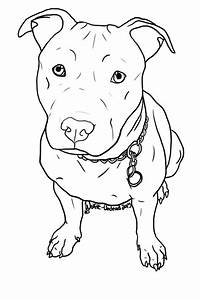Image result for how to draw a pitbull face | drawing ...