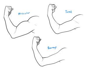 How To Draw A Muscle, Step By Step, Anatomy, People, Free