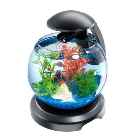poisson aquarium boule aquarium rond tetra cascade globe noir aquarium animal co