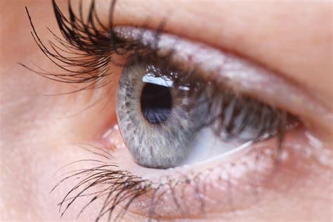 The Eye Can Spy A Single Photon Dbrief