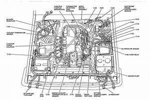 1990 E350 Fuel Pump Schematic 7 5 Gas Engine