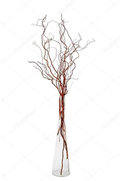 Vase With Branches by Glass Vase With Willow Branches Stock Photo 169 Hana76