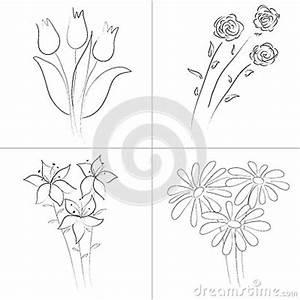 Flowers bouquets sketch