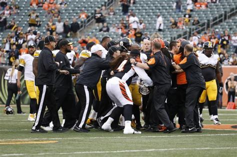 Bengals & Steelers Fight During Pregame Warmups - Daily Snark