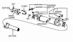 I Need The Schematic For A Rear Differential On A 1991 Ford
