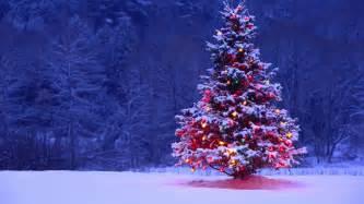 fondos de pantalla de árboles de navidad árboles navideños
