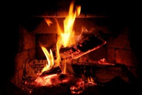 Artificial Flames For Fireplace - beautiful fireplace logs 8 artificial logs for