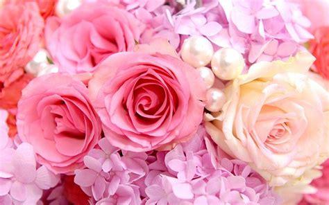 Pink Roses Background Pink Roses Backgrounds Wallpaper Cave