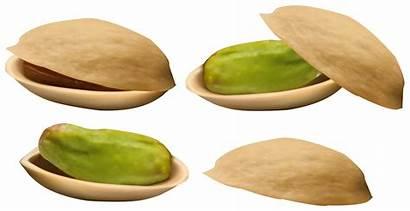 Pistachio Clipart Nuts Clip Transparent Clipground Yopriceville