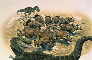 A Herd Of Triceratops Defend Digital Art by Mark Hallett