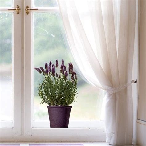 27 best images about la deco pour les vitres on