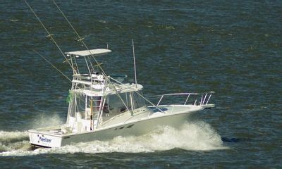 Best Saltwater Fishing Boats For Beginners by The Beginner Guide To Saltwater Fishing