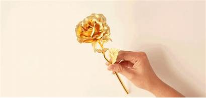 Gold Rose 24k Gift Pretty Flowers Gifts